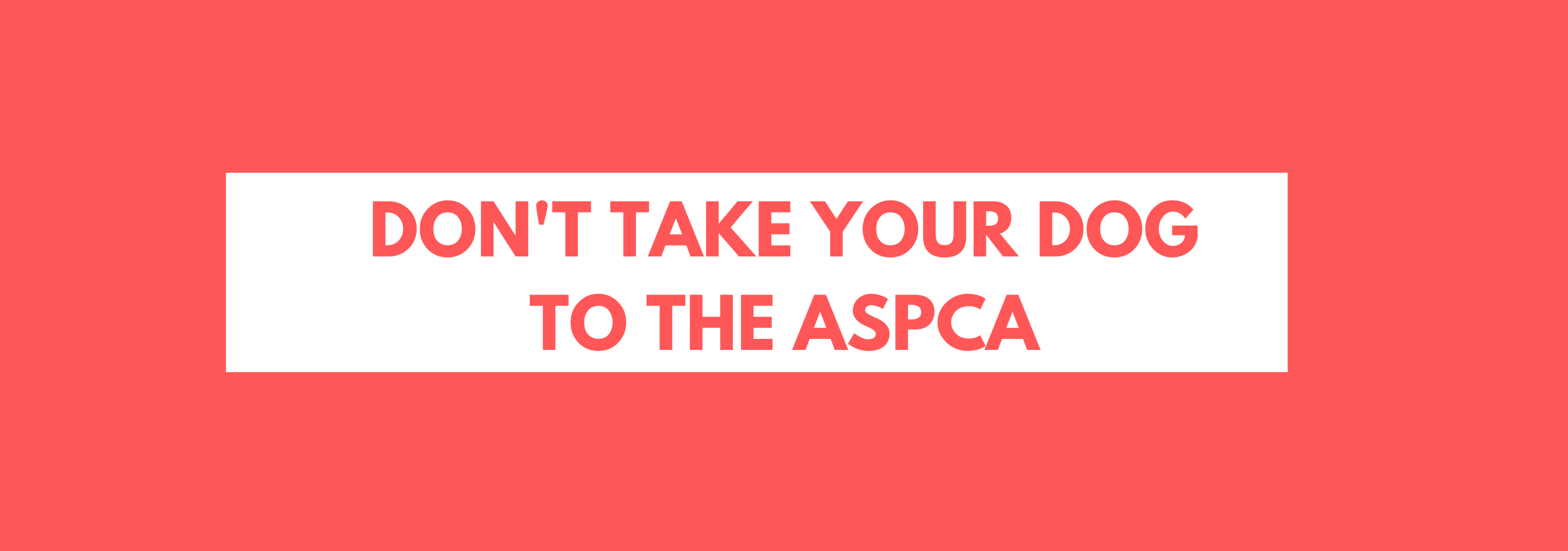 DONT TAKE YOUR DOG TO THE ASPCA