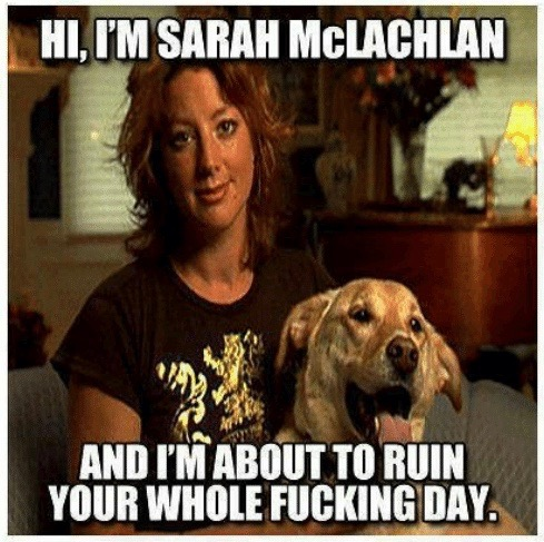 hi-im-sarah-mclachlan-and-im-about-to-ruin-your-50830743