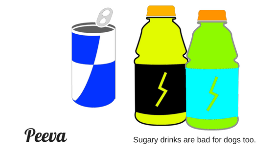sugary drinks are bad for dogs.png